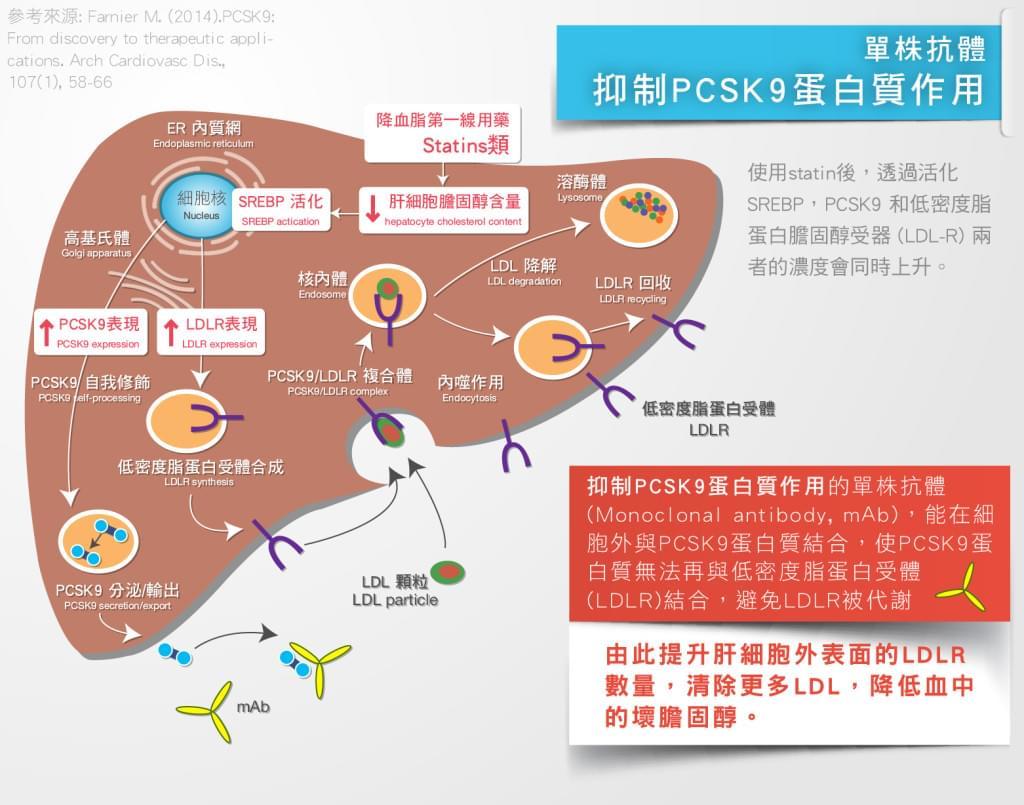 PCSK9-03