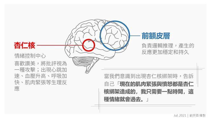 當大腦被杏仁核綁架時,會做出情緒化的判斷|劉奕酉繪製
